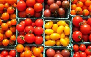 Помидоры черри – 15 лучших сортов для теплицы по отзывам садоводов с описанием и фото