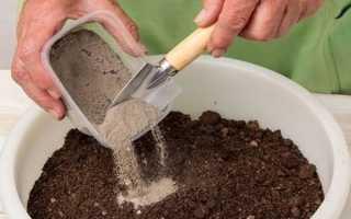 Подкормка перца золой: инструкция по применению золы