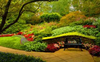 Секреты красивого и гармоничного сада + фото