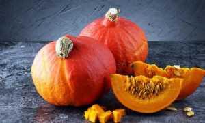 Тыква Хоккайдо: характеристики и особенности сорта, выращивание
