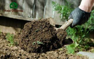Способы и приемы обращения с почвой