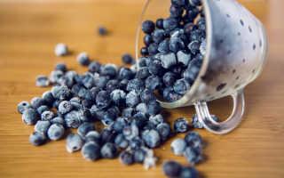 Черника на зиму – заготавливаем ягоду: варенье, заморозить, с сахором