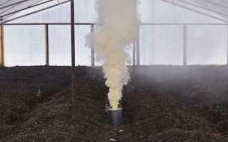 Табачная шашка для теплицы из поликарбоната: как использовать