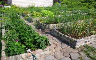 Дорожки между грядками на даче – инструкция по применению