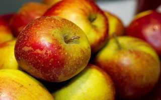 Яблоня «алтайское румяное»: описание сорта, агротехника, отзывы