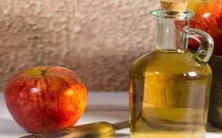 Яблочное вино – 6 простых рецептов в домашних условиях