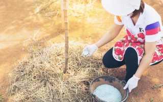 Минеральные удобрения для винограда: советы и рецепты