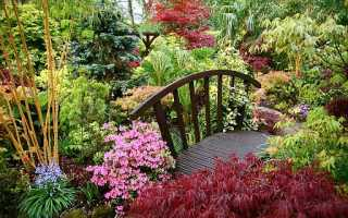 Стильный сад: ТОП 5 лучших советов