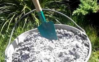 Подкормка винограда золой, способы применения древесной золы