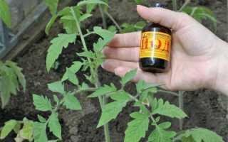 Подкормка томатов йодом – внекорневая, корневая + рецепт