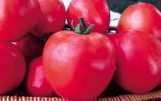 Томатно-малиновое чудо: отзывы садоводов и пошаговая инструкция, как вырастить и получить обильный урожай