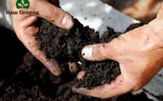Подготовка почвы. Узнай, А созрела ли почва?