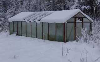 Зимняя теплица своими руками: особенности сооружения конструкции