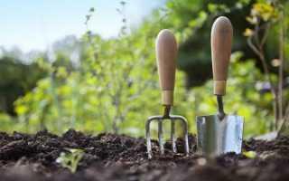 Работа в огороде – садах правила упрощающие работу + картинки