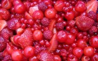 Красные ягоды – названия, сорт ягод, описание + фото