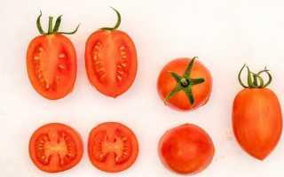 Томат Пламя: описание сорта, посадка и уход, секреты выращивания