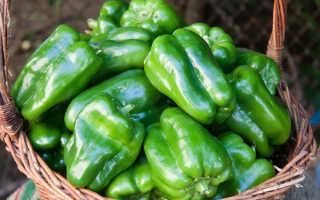 Острый и сладкий зеленый перец – сорта, особенности, польза и вред
