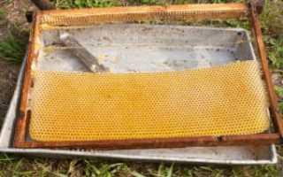 Рамки для пчел в ульях: размеры, чертежи, как сделать своими руками
