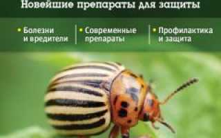 Болезни и вредители овощей – защита, обработка