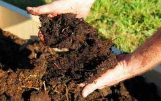 Удобрение своими руками – натуральные и необычные подкормки