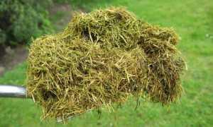Удобрения из травы своими руками: как приготовить