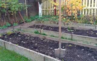 Как подготовить почву для посадки овощей осенью?