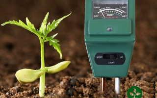 Кислотность почвы: что это такое и как ее определить?